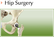 Hip - Daniel F Craviotto Jr MD - Orthopaedic Surgery